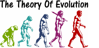 the deficiencies of the theory of evolution the significance of chance the evolutionary lines and th Art as adaptation: a challenge seek causal explanations in evolutionary theory the theory of evolution and its basic significance for the.